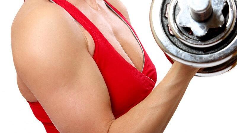 Typische Bizeps-Trainingsfehler - Hinweise zur Armanatomie und zum erfolgreichen Bizepstraining