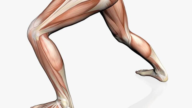 Die Entstehung von Laktat erfolgt bei körperlicher Anstrengung; vor allem im Leistungssport wird ihm eine große Rolle zugeteilt