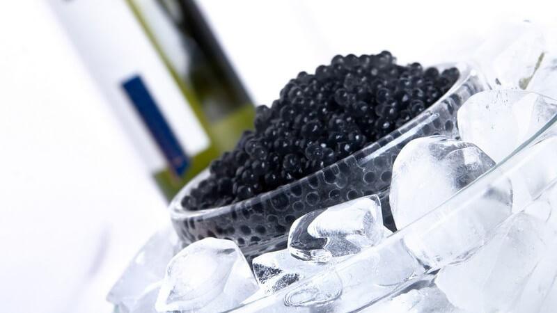 Der Kaviar sollte erst etwa eine halbe Stunde vor dem Verzehr aus dem Kühlschrank genommen werden
