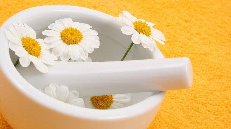 Effektiv, zart und schonend: Eigenschaften und Inhaltsstoffe von Waschlotionen für verschiedene Hauttypen