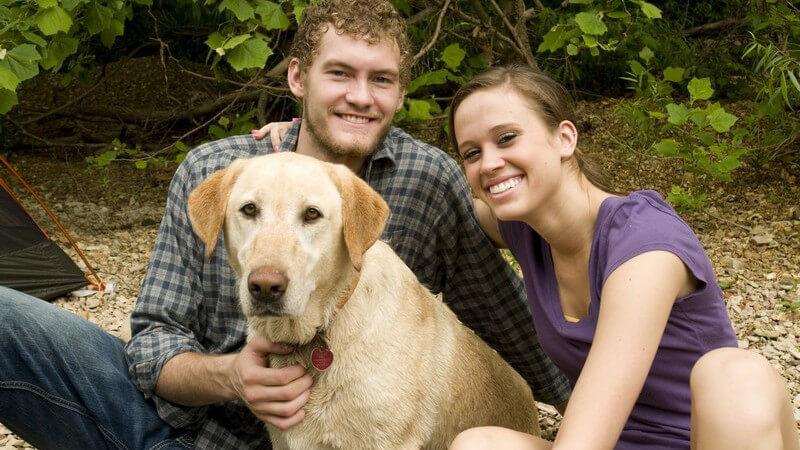 Badeurlaub mit Hund und was beachtet werden sollte, wenn man mit dem Vierbeiner ins Hotel oder Ferienhaus möchte
