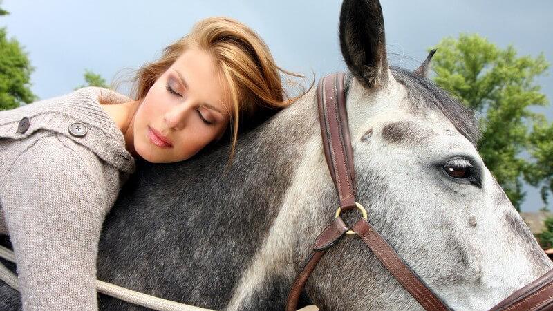Urlaub auf dem Rücken der Pferde