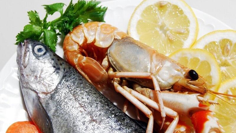 Wir haben eine tolle Sammlung an Fischrezepten, die auch für Küchen-Anfänger geeignet ist - von klassisch bis besonder ist alles dabei