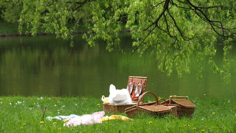 Die besten Ideen für ein Picknick