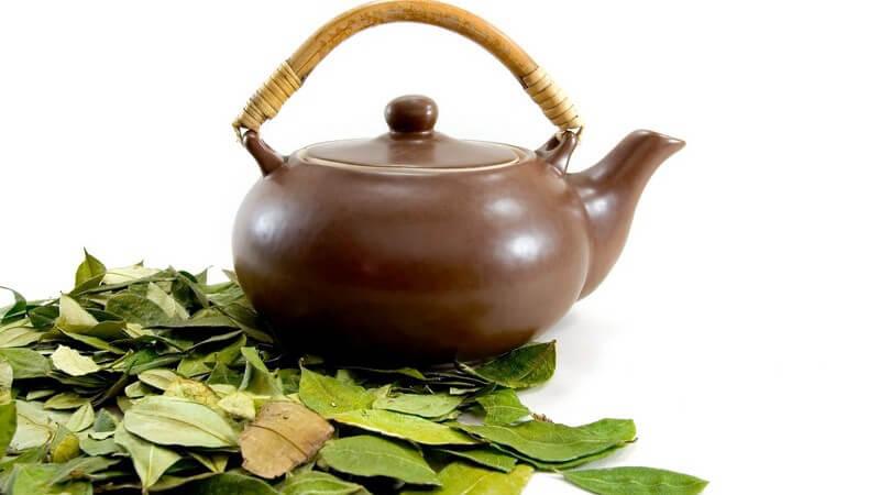 Wissenswertes rund um die Teekanne