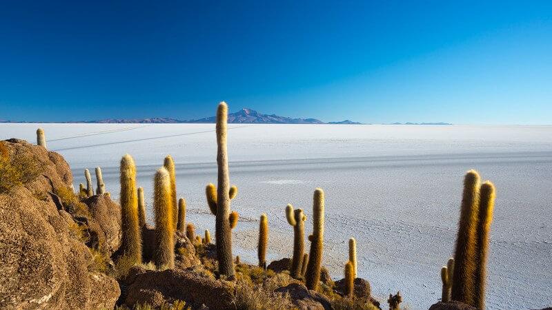 Wissenswertes über die weltweit größte Salzpfanne