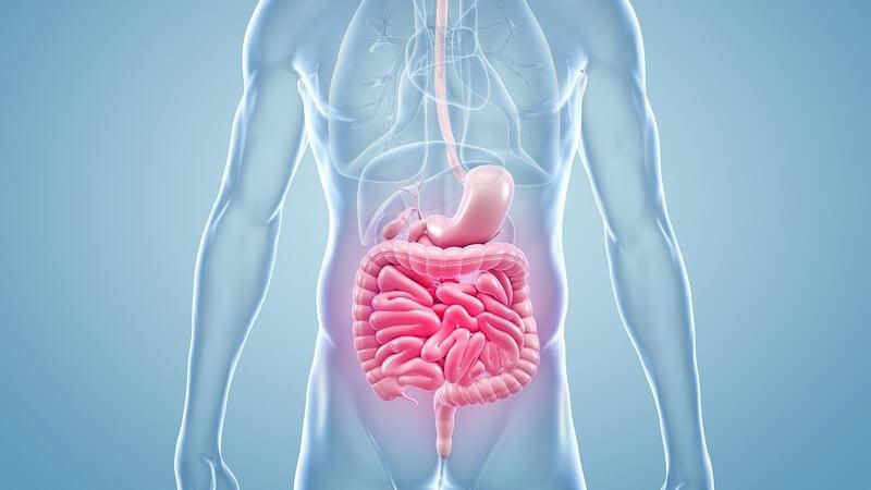 Oftmals entstehen Adhäsionen durch Beschädigungen des Bauchfells - die Verwachsungen werden häufig vom Patienten gar nicht bemerkt
