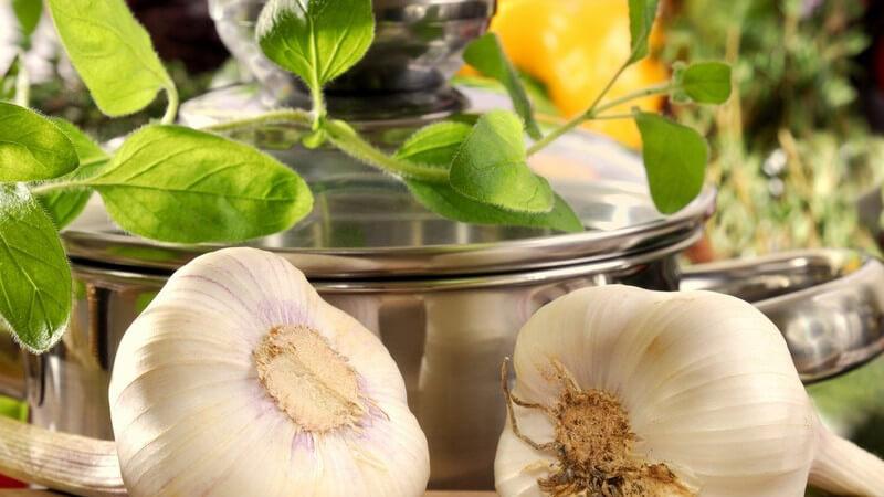 Die Mittelmeerküche ist gesund und bietet zahlreiche Variationsmöglichkeiten - doch was genau macht diese Speisen eigentlich aus?