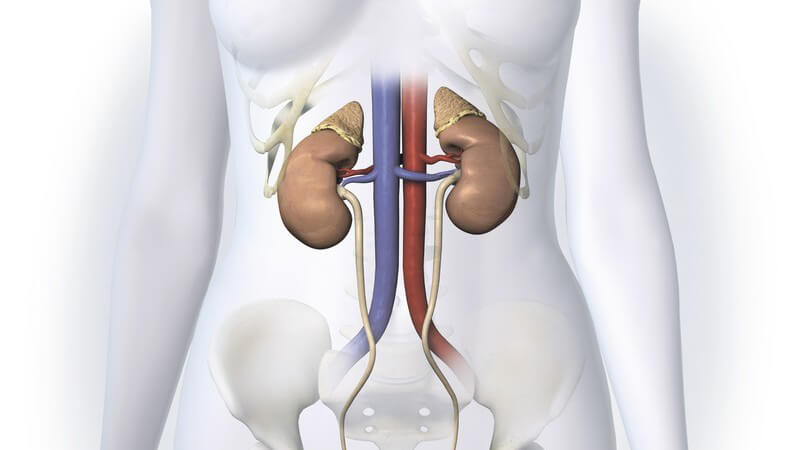 Der natürliche Harnausgang wird bei dieser Form durch die Bildung von Urinfisteln umgangen