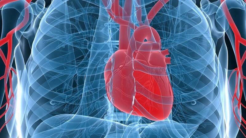 Man unterscheidet das akute sowie das chronische Cholesterinembolie-Syndrom