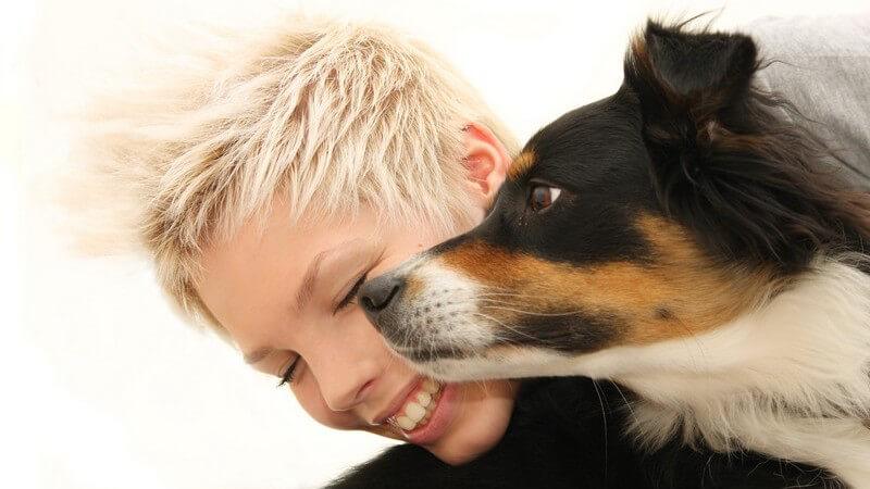 Bei der Hundehaarallergie kommt es nur bei bestimmten Rassen zu Symptomen