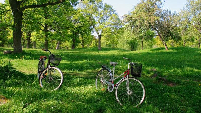 Das Cityrad - perfekt für lange, gemütliche Fahrradtouren