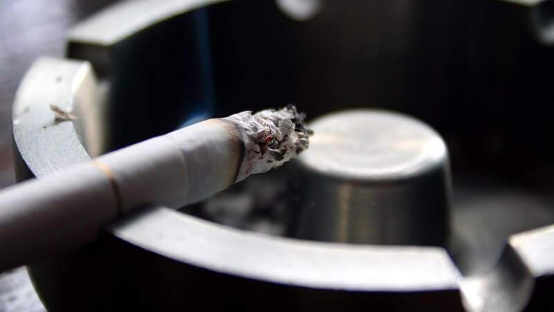 Tabakqualm gehört zu den gefährlichsten Schadstoffen und belastet insbesondere Kinder - Wir geben einen Überblick über die schädlichen Auswirkungen