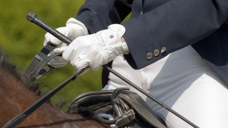 Die Reithose, das wichtigste Kleidungsstück eines Reiters