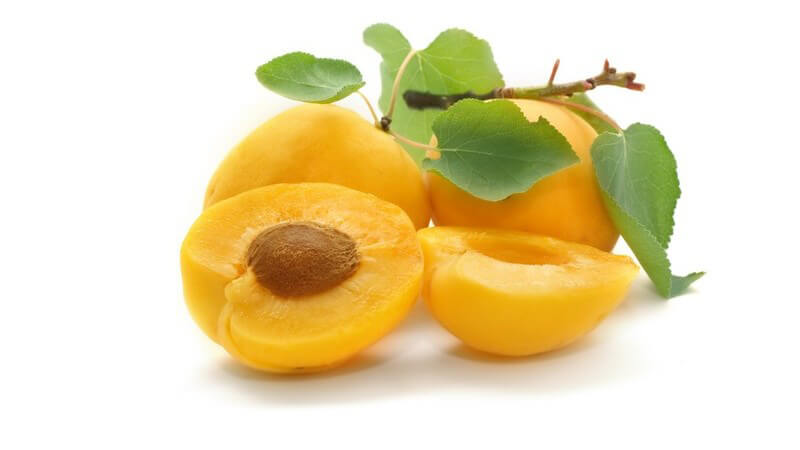 Am längsten halten Aprikosen, wenn man sie im Kühlschrank lagert