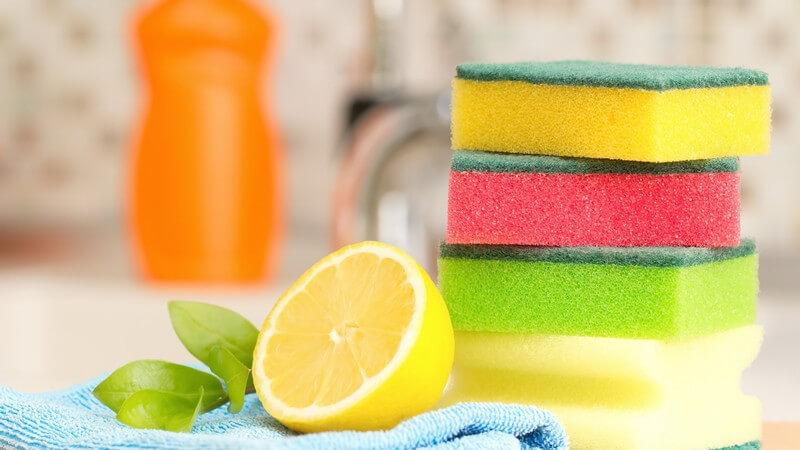 Je nach Vorliebe und Verschmutzung entscheidet man sich beim Abwasch für Spülbürste, Spülschwamm oder Stahlwolle - wichtig ist, auch das Spülzubehör gründlich zu reinigen
