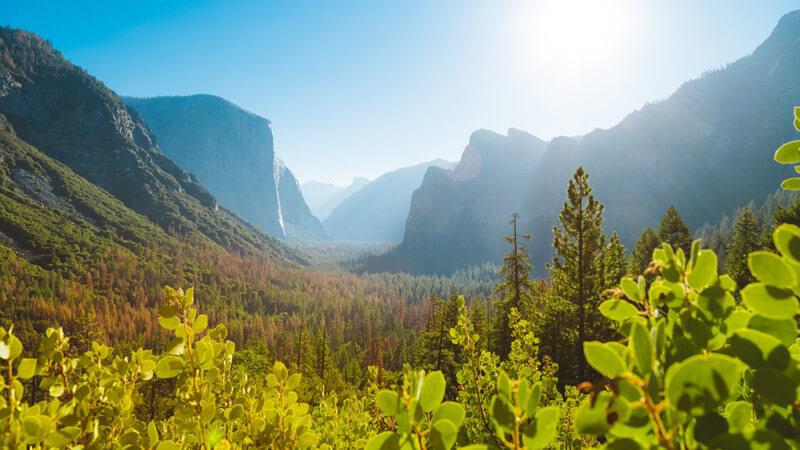 Was kann man im Yosemite Nationalpark erleben?