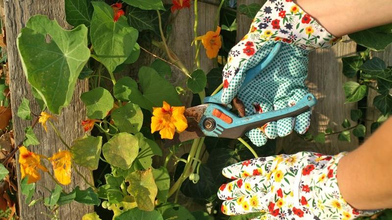 Gartenarbeit macht fit - Je nach Tätigkeit und Aufwand benötigt man diverse Geräte