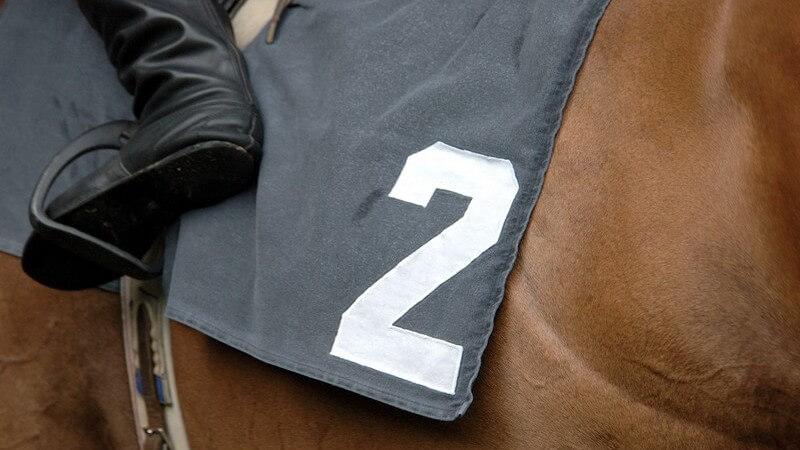 Die Regeln des Vielseitigkeitsreitens und gestellte Anforderungen an das Pferd beim Eventing