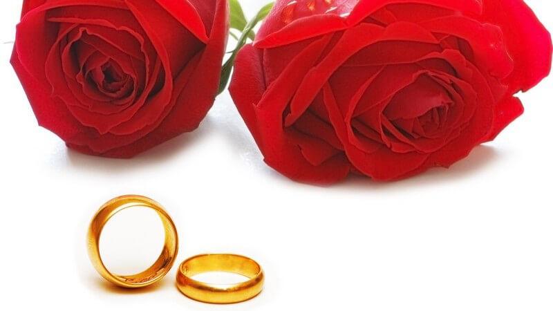 Do's und Don'ts für ein passendes Brautkleid