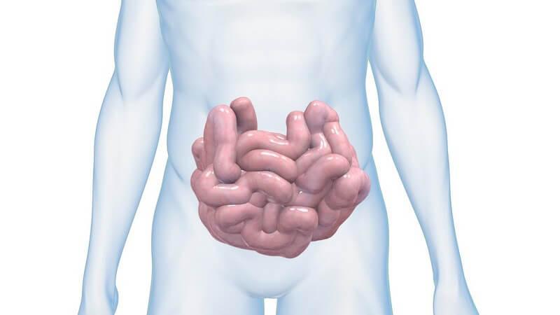 Barfußlaufen stellt ein hohes Risiko dar, sich in betroffenen Regionen mit Zwergfadenwürmern zu infizieren