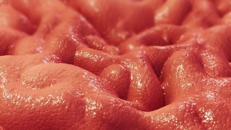 Ein angeborener Gendefekt führt zu einem Mangel am Protein C1-Esterasehemmer