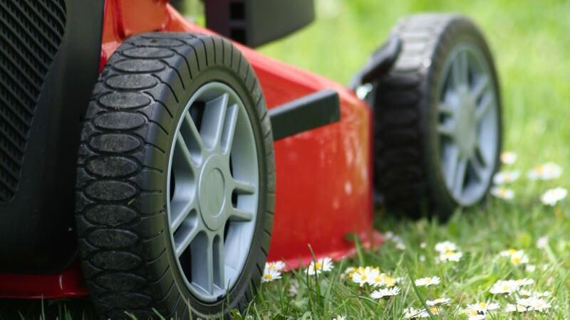 Um den Rasen zu vertikutieren, hat man unterschiedliche Geräte zur Auswahl - wer sie nicht oft nutzt, hat auch die Möglichkeit, sie zu mieten