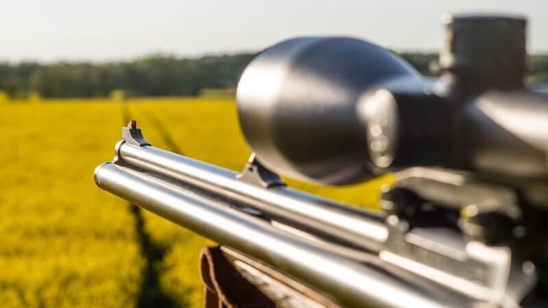 Von Treibjagd bis Fallenjagd - es gibt unterschiedliche Jagdarten; wir informieren über die Gründe und Aufgaben der Jagd sowie die Kritik an der Jagd durch den Tierschutz