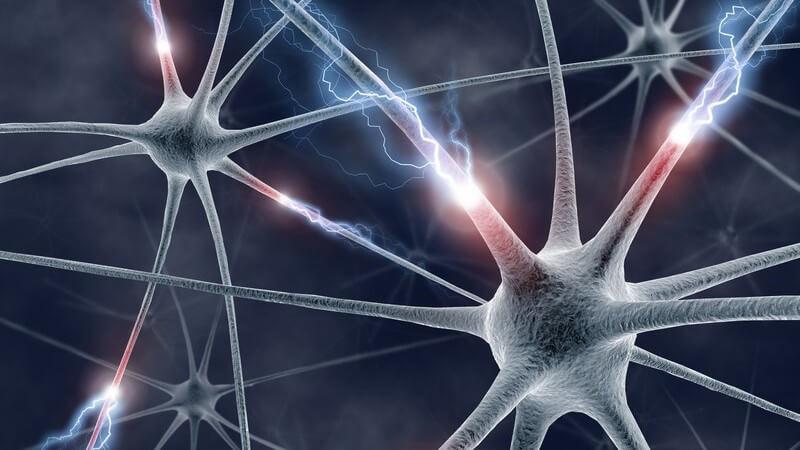 Die Entstehung eines epileptischen Anfalls und wie man ihn behandeln und lindern kann