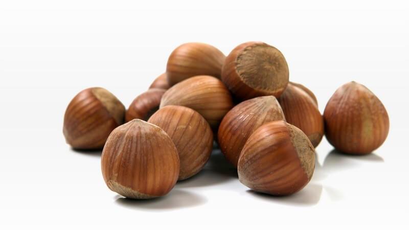 Eine kurze Zusammenfassung über mögliche Sorten und die Verwendung von Erdnüssen, Walnüssen, Haselnüssen und Co