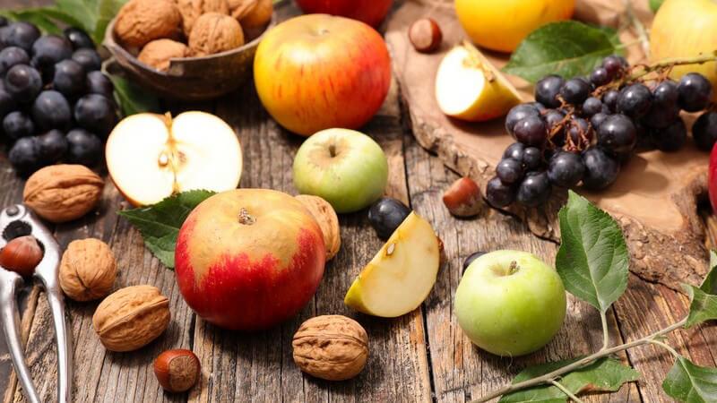 Zu den geeigneten Zutaten für einen Eiweißriegel zählen z.B. verschiedene Nüsse, Kerne und Getreideflocken sowie zahlreiche getrocknete Früchte