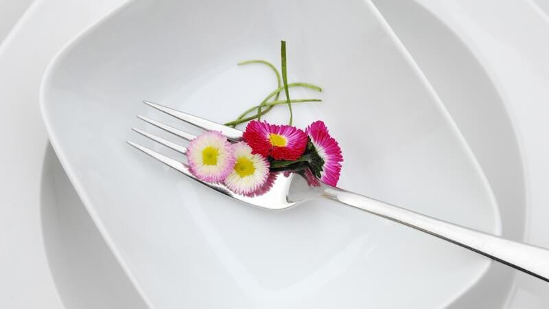 Weißes Geschirr aus Porzellan ist sehr empfindlich - in Sachen Reinigung, Pflege und Lagerung sollten einige Punkte beachtet werden