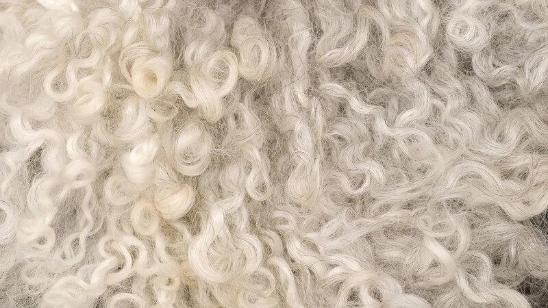 Wie bekommt man ein Schaffell wieder weich?