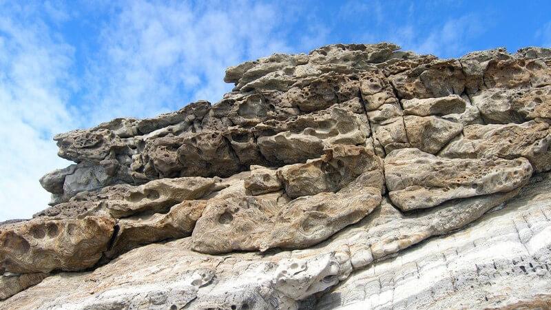 Die Paläontologie ist ein spannendes und aufwendiges Forschungsgebiet; für die Arbeit werden unterschiedliche Werkzeuge und Hilfsmittel benötigt