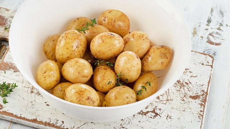 Wissenswerte Grundlagen der oligoantigenen Diät