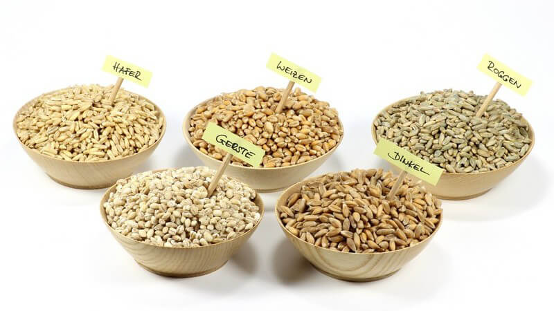 Wissenswerte Grundlagen der Sears-Diät und Hinweise zur Block- oder Augenmaß-Methode