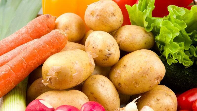 Einführung in ein veganes Leben - auf welche Nahrungsmittel Veganer und Vegetarier verzichten sollten