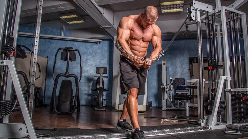 Wissenswertes rund um das Bodybuilding