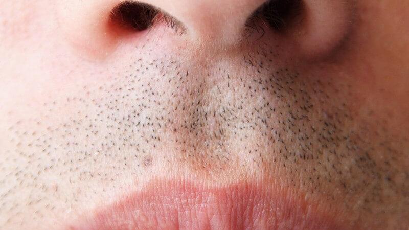Die Nasenhaare schützen die Nase vor dem Eindringen von Fremdkörpern und Schmutzpartikeln