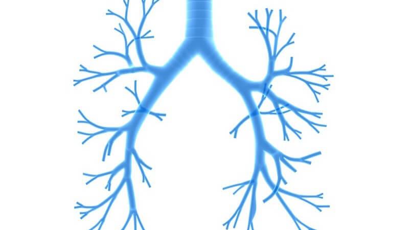 Anwendungsgebiete der Atemtherapie: Mit Atemübungen entspannen und der Figur etwas Gutes tun