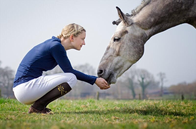 Pferd von frau genommen wird Die Letzten