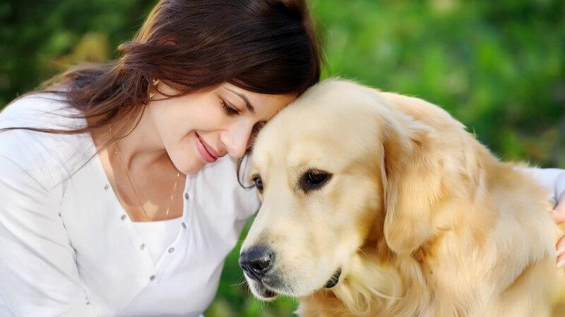 Bei der Wahl der Hundenahrung sollte man auf bestimmte Zusätze achten, die der Fellgesundheit des Hundes dienen
