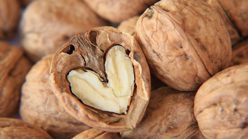 Nüsse sind gesund und in Maßen genossen sehr wertvoll für den Speiseplan - lesen Sie hier, welche Nuss zu welchen Gerichten passt
