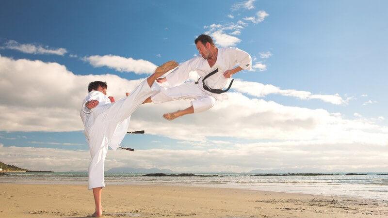 Zu den Abwehrtechniken des Hapkido zählen Handtechniken, Fuß- und Beintechniken, Atemtechnik sowie die Fallschule