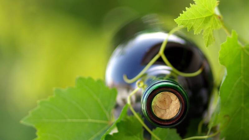 Wein aus ökologischem Weinanbau unterliegt strengen Richtlinien