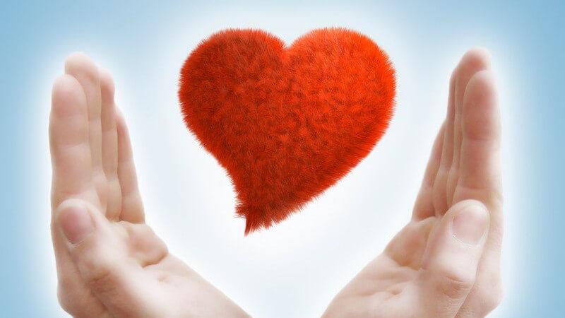 Romantisch, freundschaftlich, besitzergreifend, pragmatisch, spielerisch, altruistisch - Welche Formen Liebe annehmen kann
