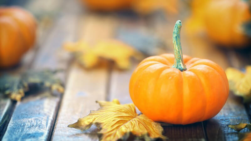 Wissenswertes zum Herbstgemüse