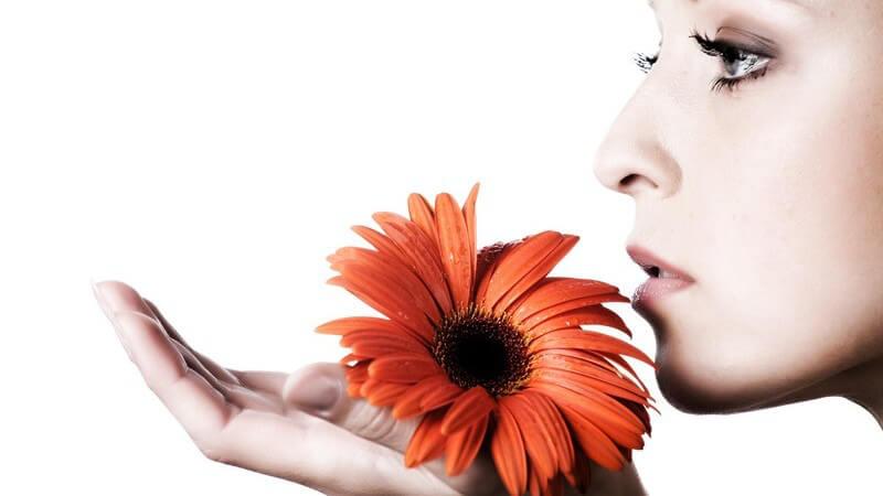 Verschiedene Reize können Allergien auslösen oder zu weiteren Hautproblemen führen, die es zu behandeln gilt