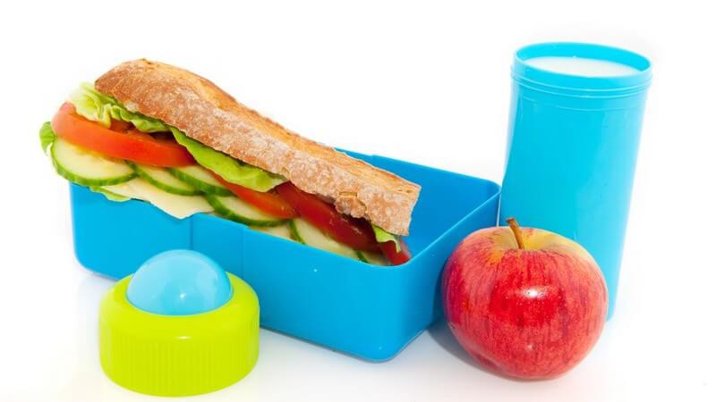 Ein besonderes Augenmerk sollte auf ausreichend Kohlenhydrate gelegt werden; Fette sollten vorwiegend aus pflanzlichen Quellen und aus Fleisch kommen
