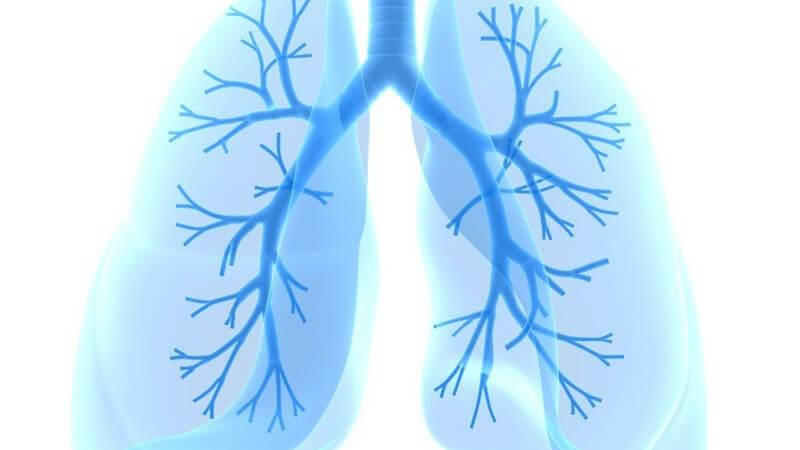 Die Entstehung einer chronisch obstruktiven Lungenerkrankung und wie man sie erkennen und behandeln kann
